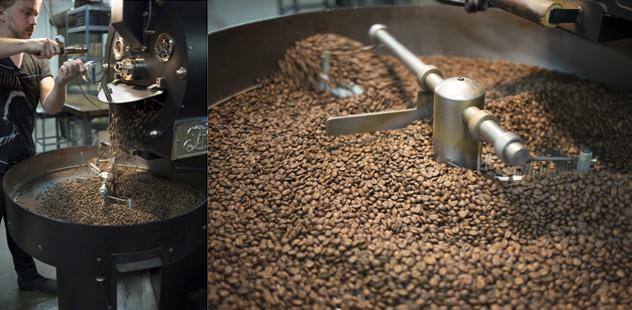 Insight Coffee