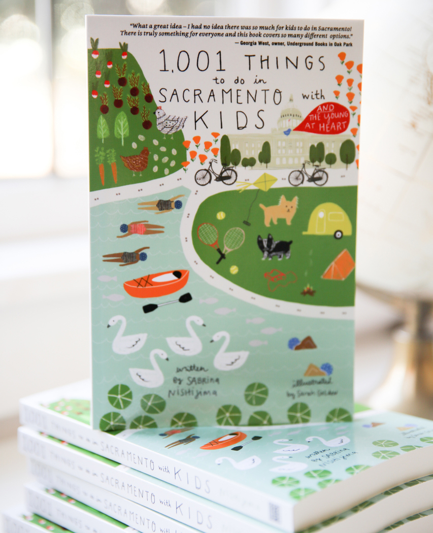 Adventures Await In Local Moms New Book 1001 Things To Do In