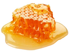 honey-comb-web