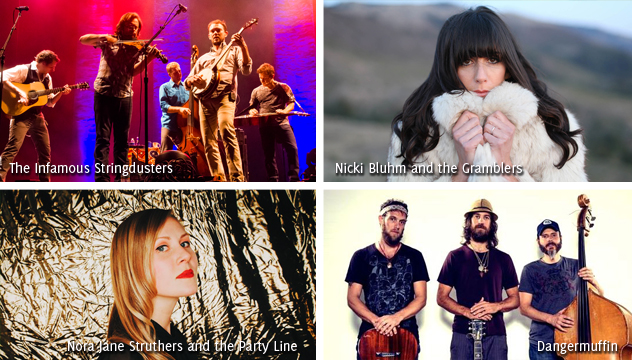 American River Music Fest line up 2015