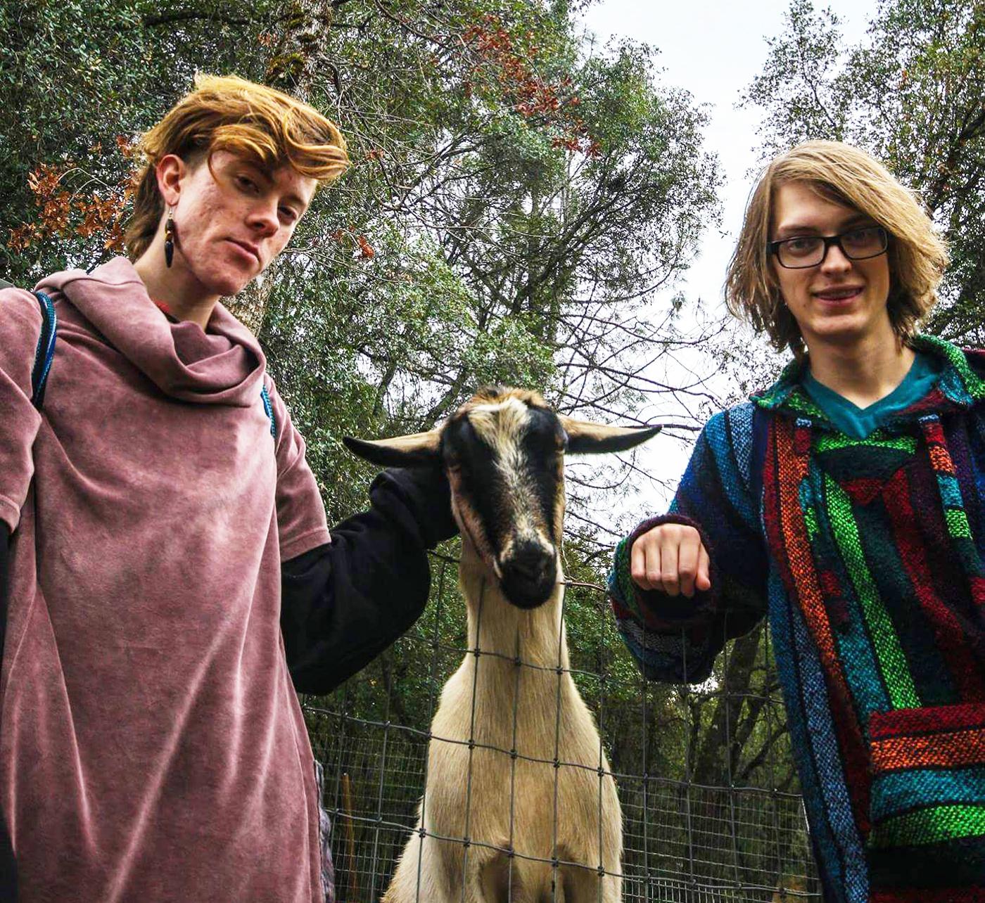 Worthy Goat